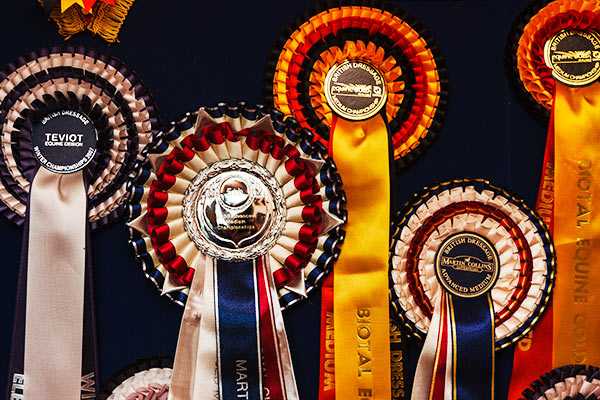 Some of the rosettes Debbie Childs has been awarded over many years of ompetion